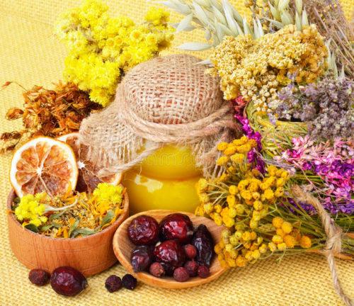 Травы и мед