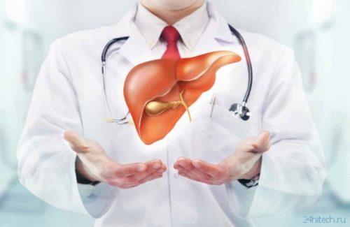При проблемах с печенью необходимо обращаться к врачу – гепатологу