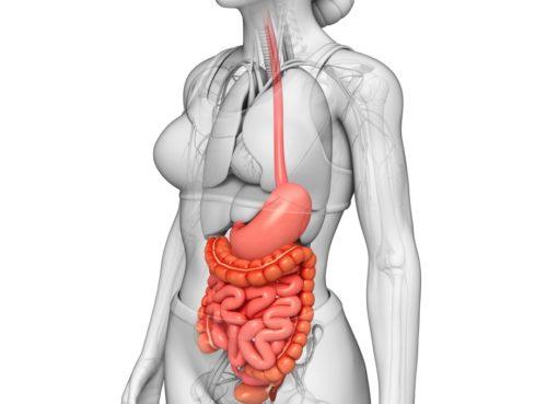 Слизистая пищевода – заболевания, симптомы и отзывы
