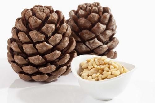 Кедровые орешки в шишке