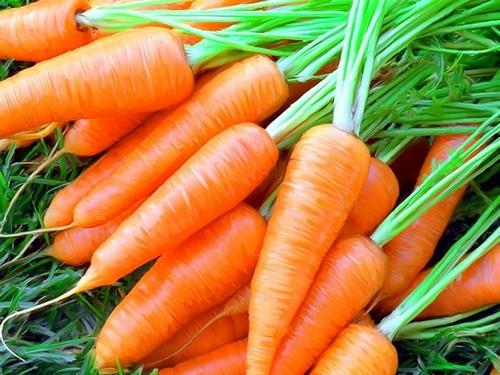 Использовать овощ на острой фазе панкреатита не разрешается