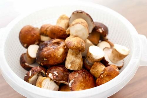 Какие грибы при панкреатите thumbnail