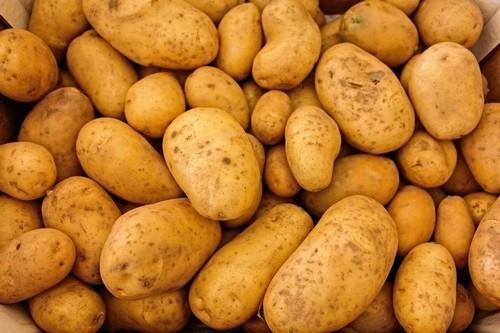 Картофель (картошка) при панкреатите