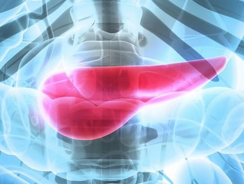Основные симптомы и методика лечения рака поджелудочной железы на 4 стадии
