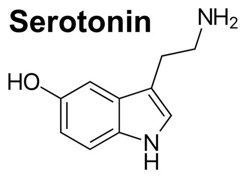 does klonopin lower serotonin