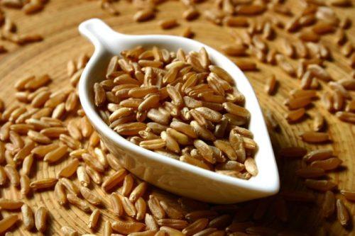 зернах есть большой объем белковых компонентов и растительных жиров